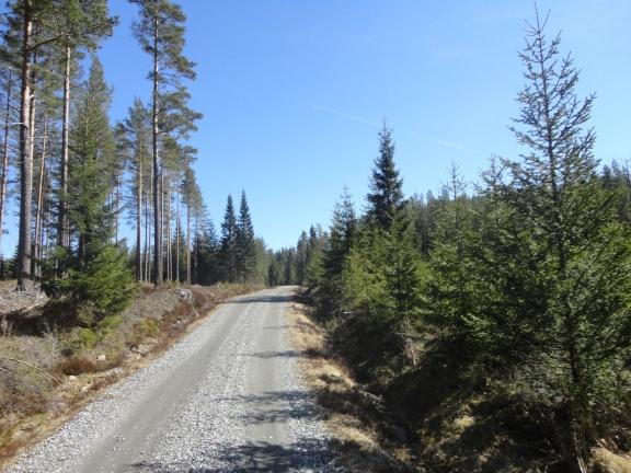 På veien til campen