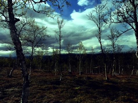 fjellhimmel_Fotor